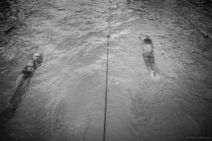 Plavci-Nikon-036